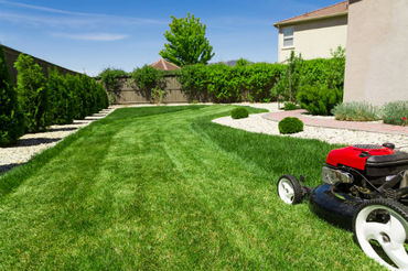Boise Lawn Maintenance Services